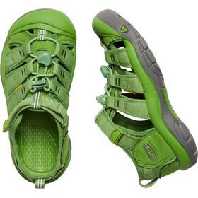 Keen Newport H2 Sandals Ungdom fluorite green